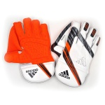 Adidas Incurza 2.0 Wicket Keeping Gloves