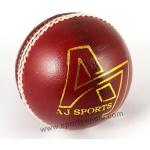 AJ MATCH Cricket Balls