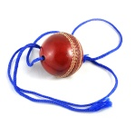 Hanging Cricket Leather Ball for Practice