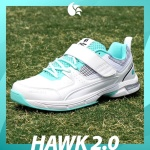 DSC Hawk 2.0 with Velcro Cricket Spikes