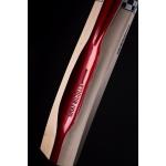 Gray Nicolls Scoop XVII 400 English Willow Cricket Bat