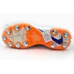 Nike Domain 2 Cricket Shoes