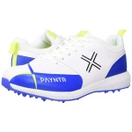 Payntr V Pimple Cricket Shoes