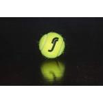 RS All Court Black Edition Tennis Balls (4 Balls)
