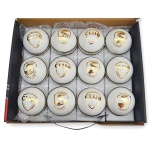 SG Club Leather Ball (White) - Pack of 12 Balls