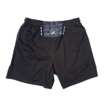 VectorX Men's Shorts - Rice Mesh