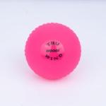 Woods Truwind Pro Cricket Wind Ball