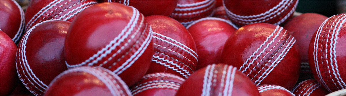 Red 2 Piece 142gm WHACK County Leather Cricket Ball