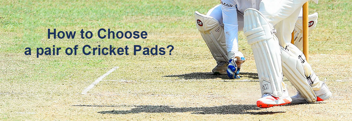 cricket pads selection