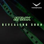 Transform attack